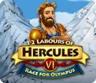 12 Labours of Hercules VI: Race for Olympus oyunu