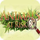 Animals At Risk oyunu
