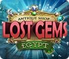 Antique Shop: Lost Gems Egypt oyunu