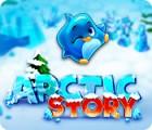 Arctic Story oyunu