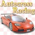 Autocross Racing oyunu