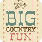 Big Country Fun oyunu