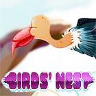 Birds Nest oyunu