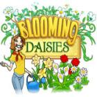 Blooming Daisies oyunu
