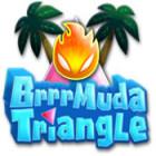 Brrrmuda Triangle oyunu