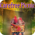 Carefree Picnic oyunu