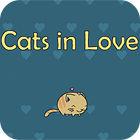 Cats In Love oyunu