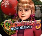Christmas Wonderland 5 oyunu