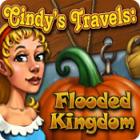 Cindy's Travels: Flooded Kingdom oyunu