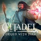 Citadel: Forged with Fire oyunu