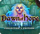 Dawn of Hope: The Frozen Soul Collector's Edition oyunu