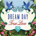 Dream Day True Love oyunu