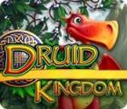 Druid Kingdom oyunu