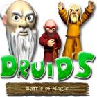 Druid's Battle of Magic oyunu
