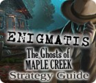 Enigmatis: The Ghosts of Maple Creek Strategy Guide oyunu