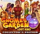 Gnomes Garden: Lost King Collector's Edition oyunu