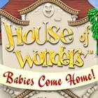 House of Wonders: Babies Come Home oyunu