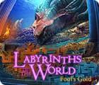 Labyrinths of the World: Fool's Gold oyunu