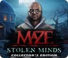 Maze: Stolen Minds Collector's Edition oyunu
