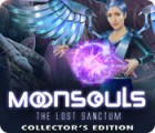 Moonsouls: The Lost Sanctum Collector's Edition oyunu