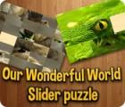 Our Wonderful World oyunu