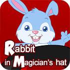 Rabbit In Magician's Hat oyunu