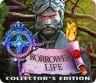 Royal Detective: Borrowed Life Collector's Edition oyunu