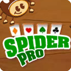 Spider Pro oyunu