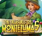 The Treasures of Montezuma 5 oyunu